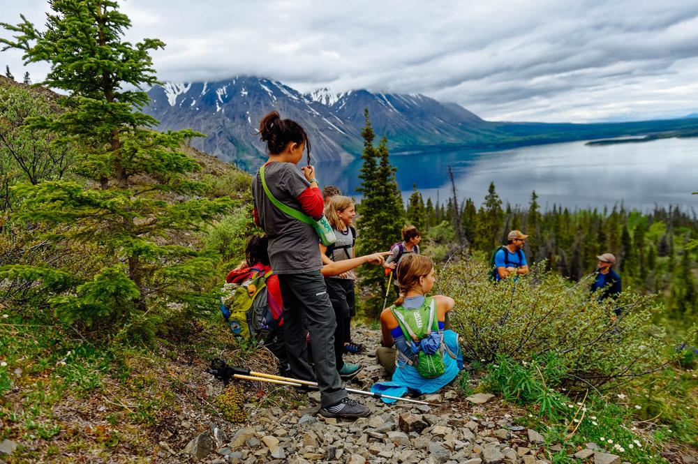 Image result for Kluane National Park, Yukon