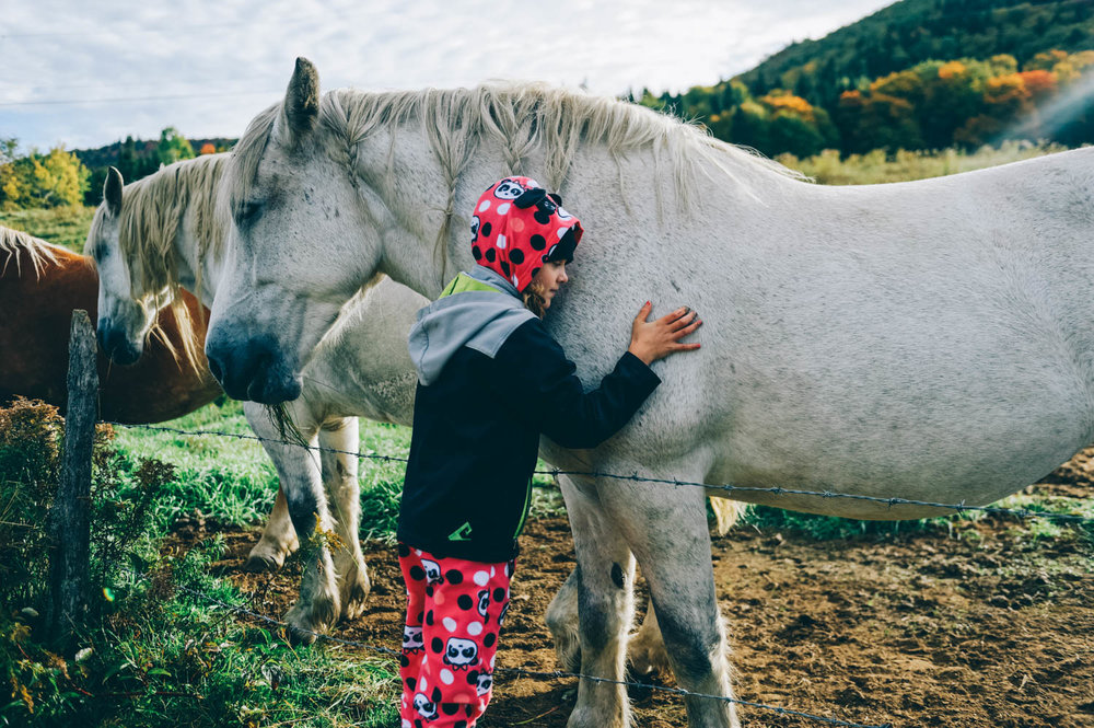 When was the last time you hugged a horse while still in your pyjama?