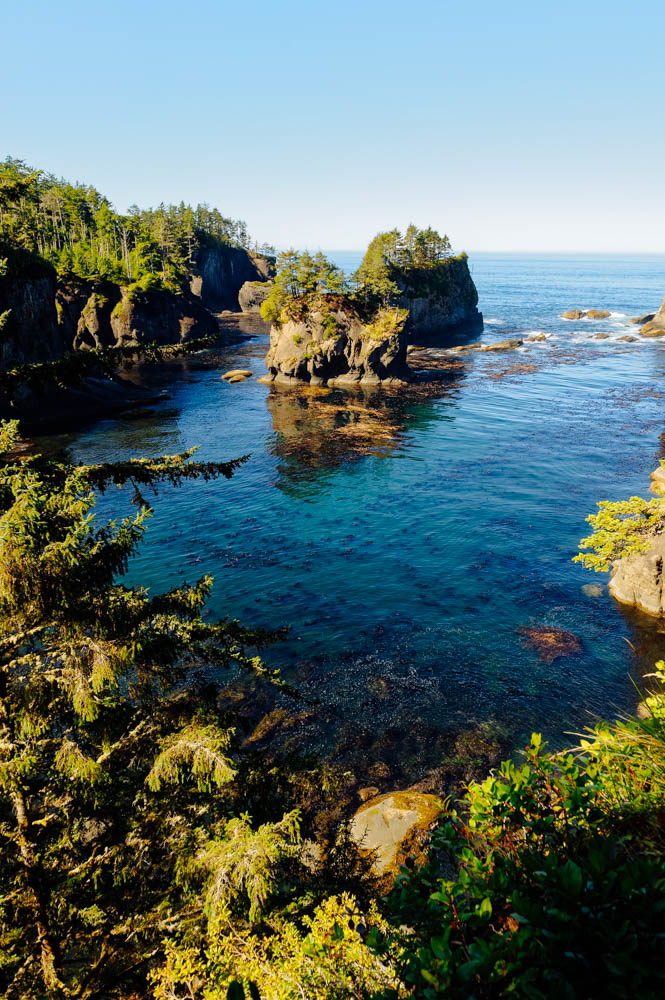 View at the tip of Cape Flattery