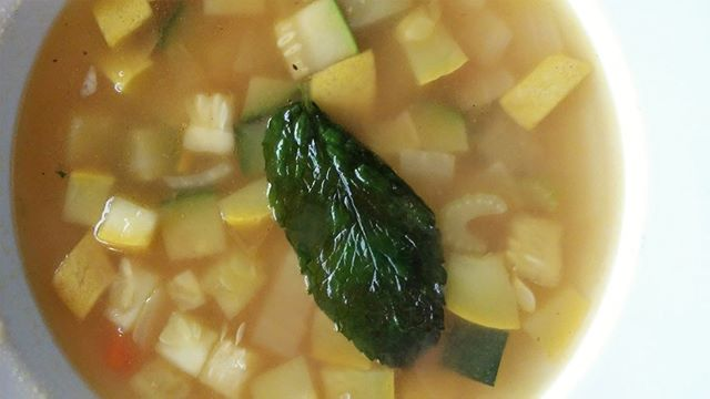 Saturday's Soup Special is Summer Squash and Celery Soup. Slurp something satisfying with us today!