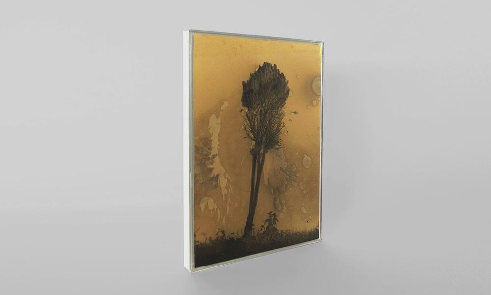 Daisuke Yokota Untitled (Display Edition)