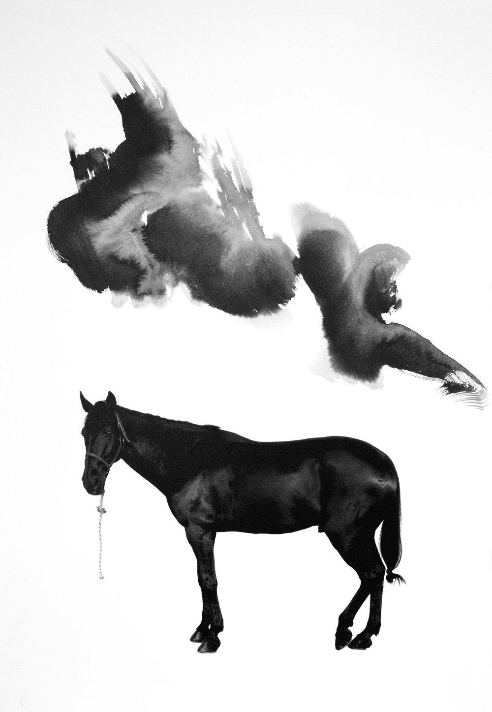 Noir 10