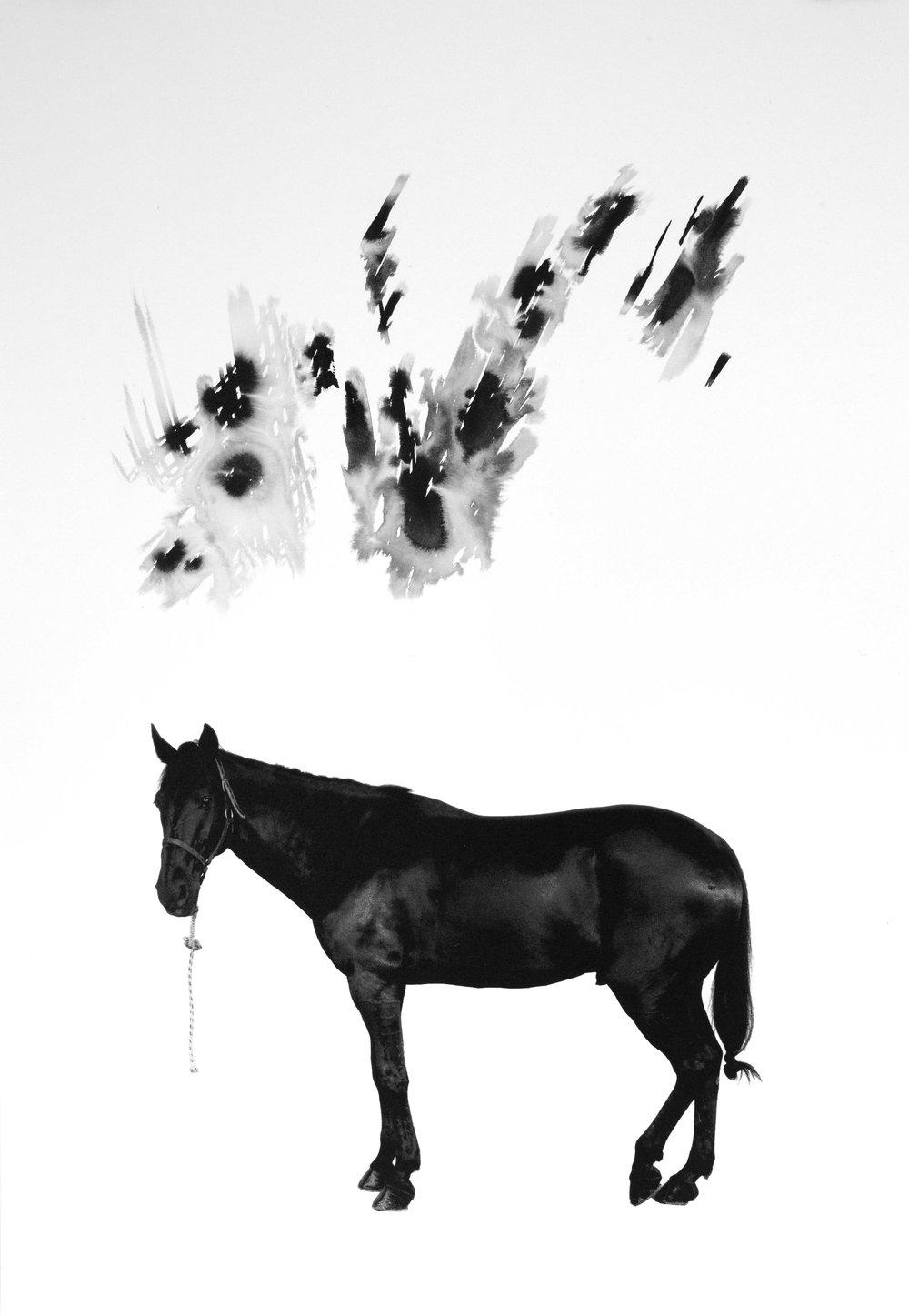 Noir 12 (Sold)