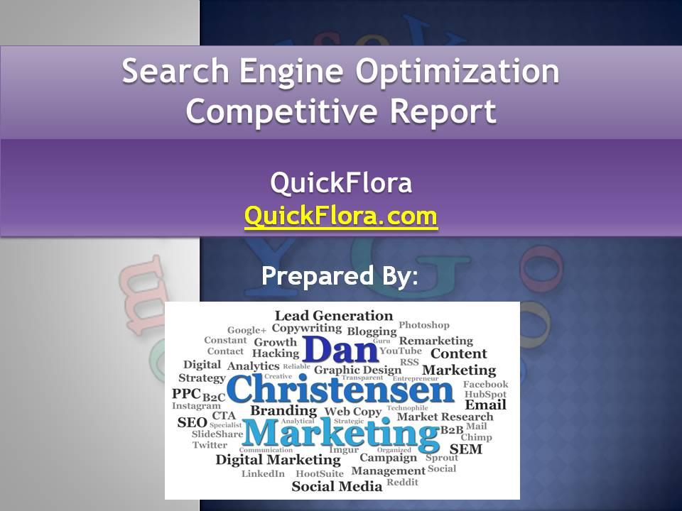 SEO Competitive Report
