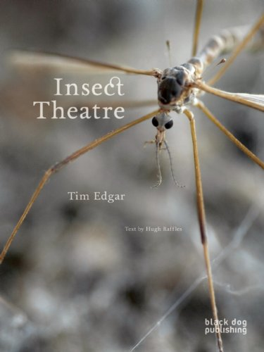 Insect Theater.jpg