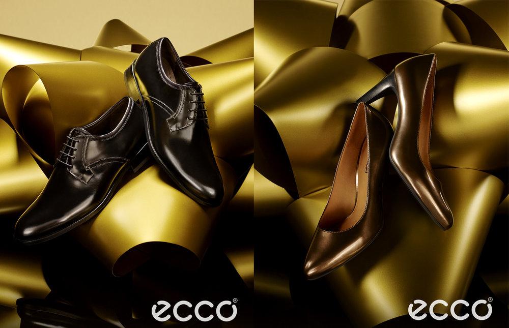 ECCO1.jpg