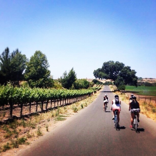 Wine tasting by bicycle in Los Olivos