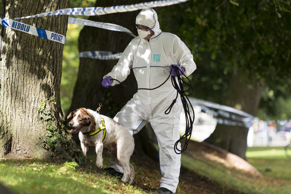 CARDIFF, WALES - SEPTEMBER 24: Police forensic teams investigate a sex attack at Gorsedd Gardens in Cardiff Civic Centre, South Wales. The third sex attack in five days. (Photo by Matthew Horwood)