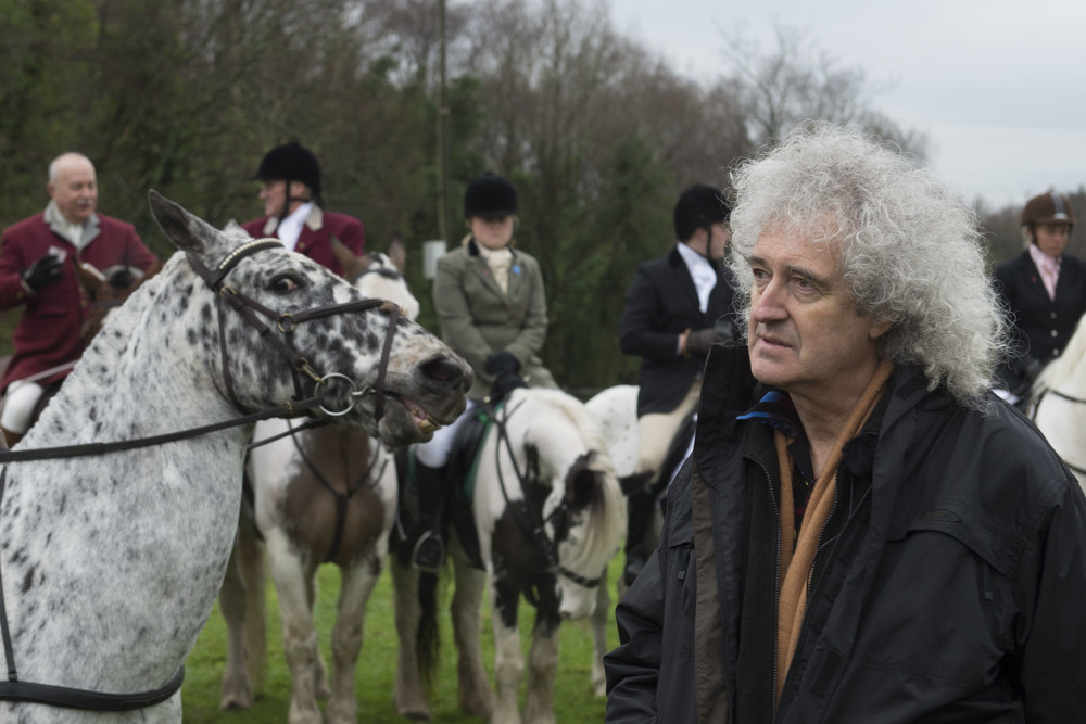 Brian May attends the Three Counties Bloodhounds meeting in Birchgrove, Swansea, to witness first-hand the legal side of recreational hunting. Brian May has opposed Government attempts to repeal the The Hunting Act of 2004.