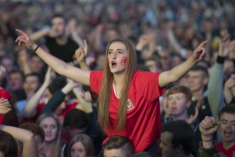 Wales football fan