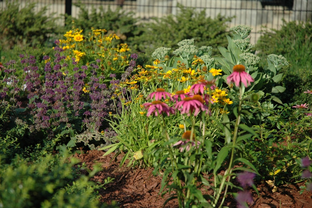 fopp_garden_2.jpg