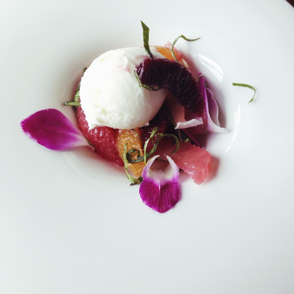 Dessert   ↓