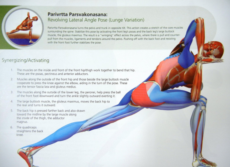 REVOLVING LATERAL ANGLE POSE