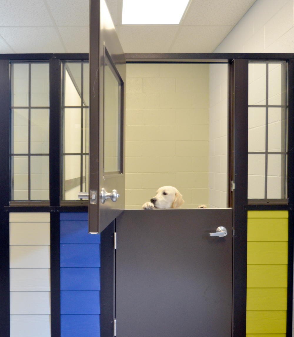ANIMAL CARE   Spaces for Rest