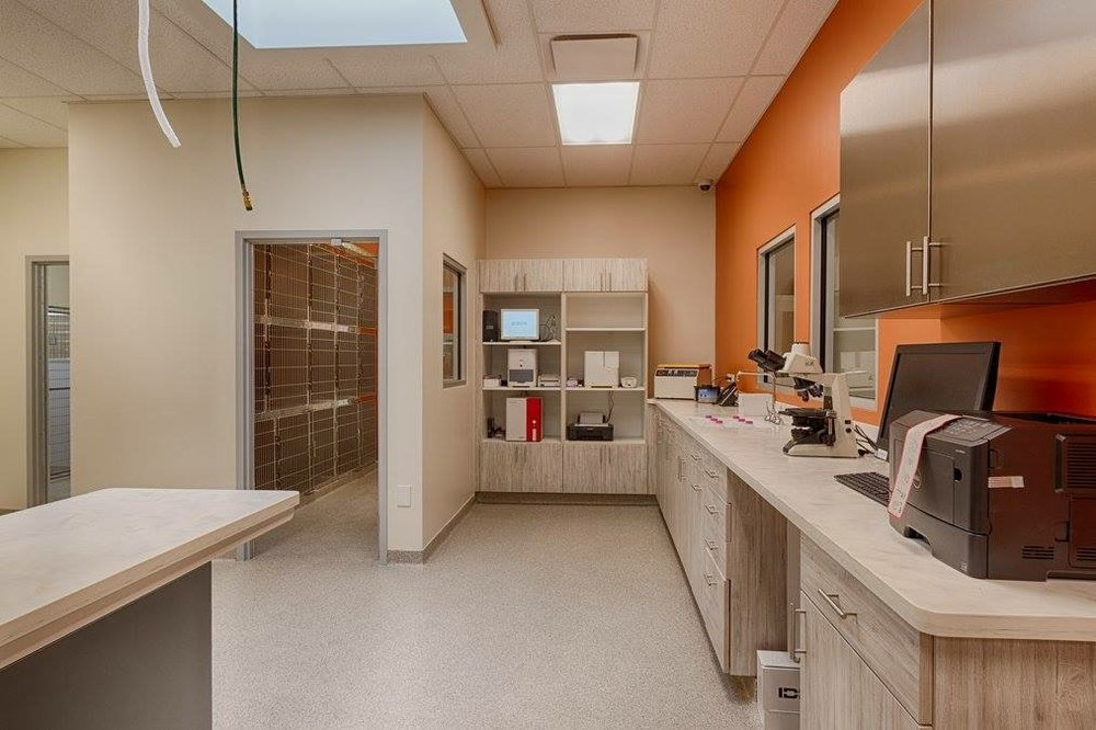 COYNE VETERINARY CENTER