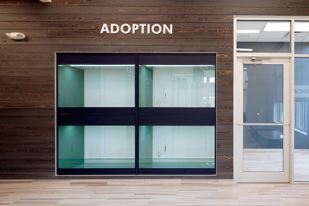 Crown Point - Adoption - _BP_7211.jpg