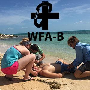 WFA-B SQUARE copy.jpg