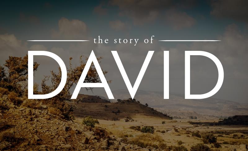 David web.png
