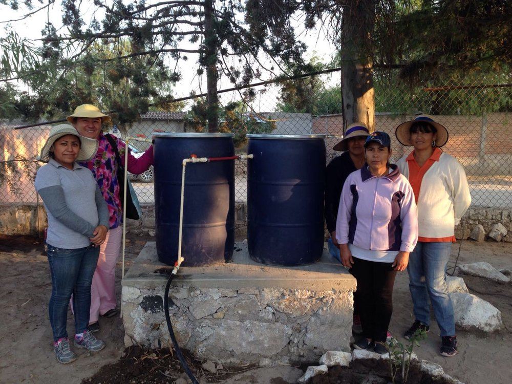 Biochar treatment system in the elementary school of Vergel de Guadalupe