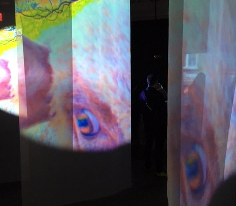 From Administering Eternity, Pippilotti Rist, 2011