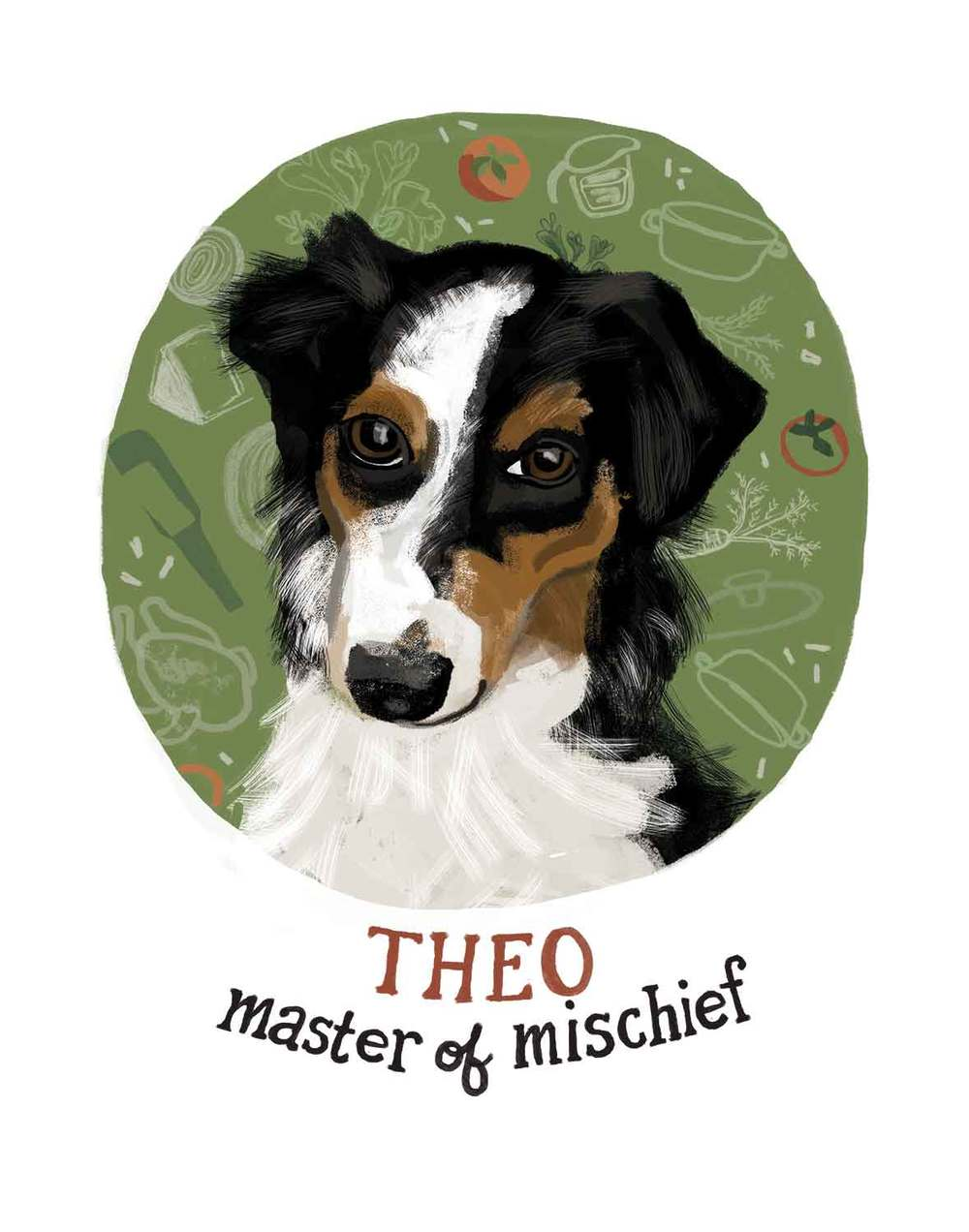 Theo, the Australian Shepherd