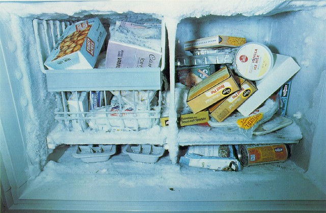 eggleston_freezer.jpg