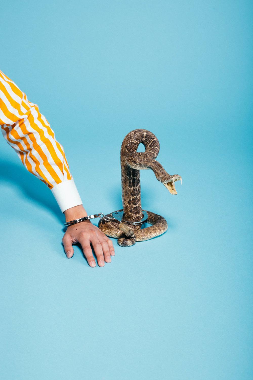 KOL-Snake.jpg