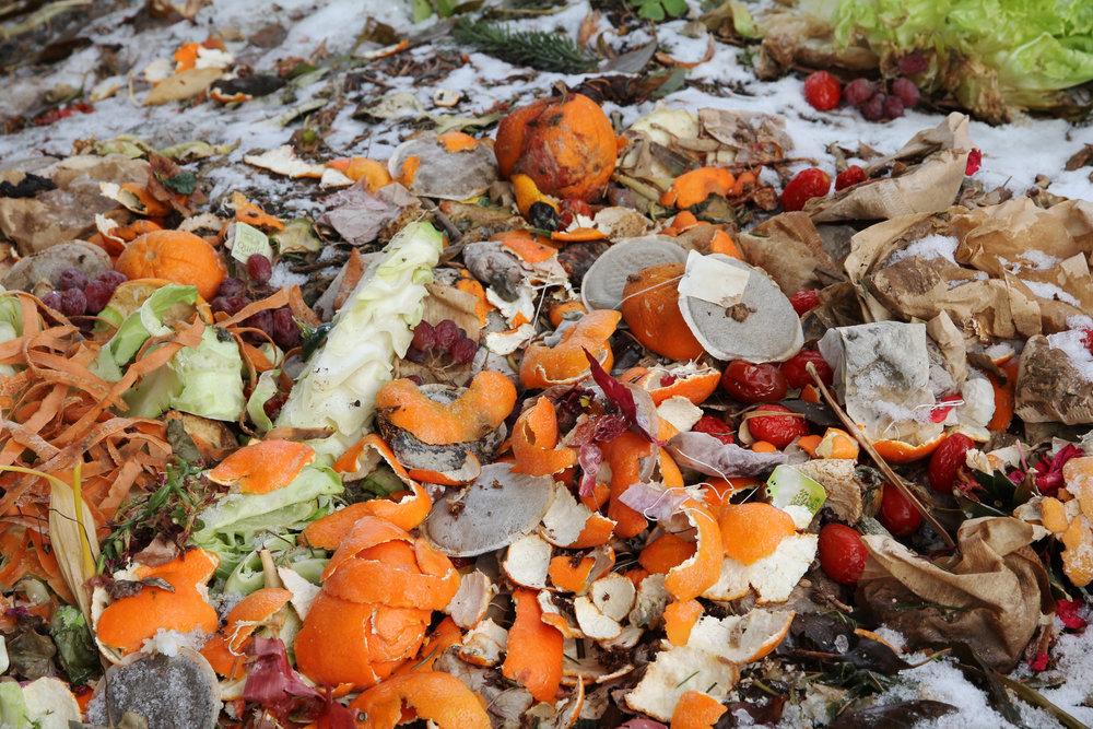 Food waste.jpg