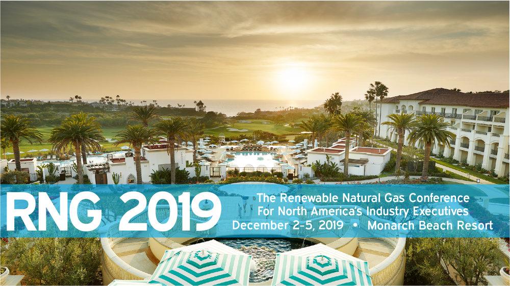 Web Banner - RNG 2019 Conference.jpg