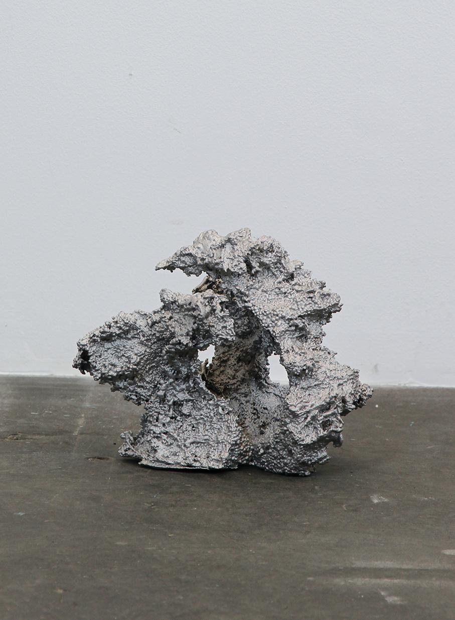 8_Theis Wendt_Ambient Reef # 5_aluminium cast_18x14x13cm_2015.jpg