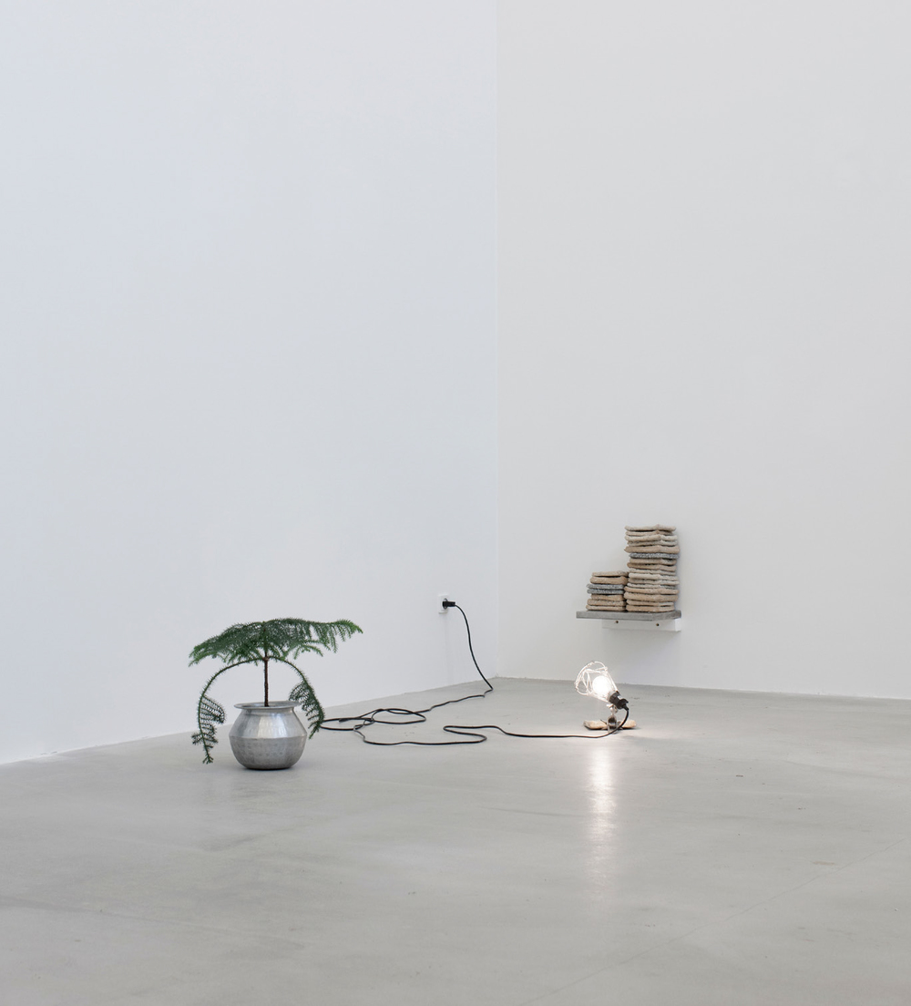 Jan S. Hansen: 'Hardtack installation', 2016, hardtack, aluminum shavings, motor oil, clip-on lamp, stainless stell shelf and pine plant in aluminum pot