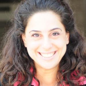 Dr Teresa Chahine   Director, Alfanar Lebanon & Research Associate, Center for Health and the Global Environment, Harvard University