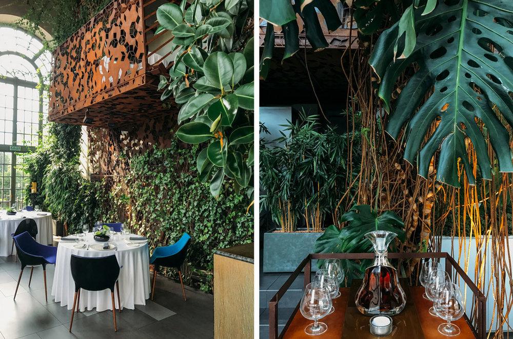 belvedere-restaurang-warszawa19.jpg