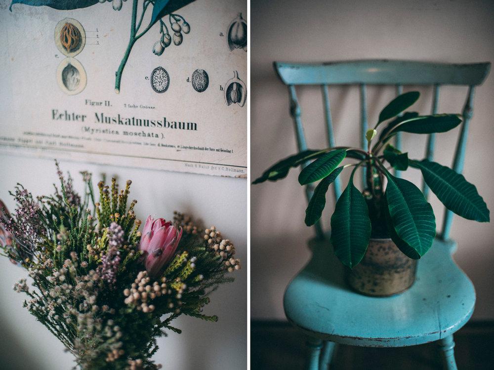 inredning med växter på kontor fotograf stockholm