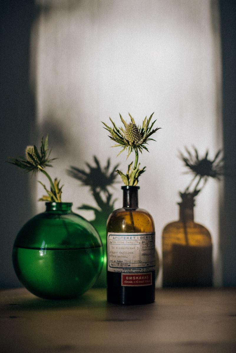 inredning med växter