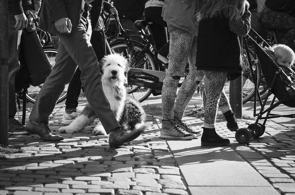 en guide med tips om hur du fotograferar bättre i städer