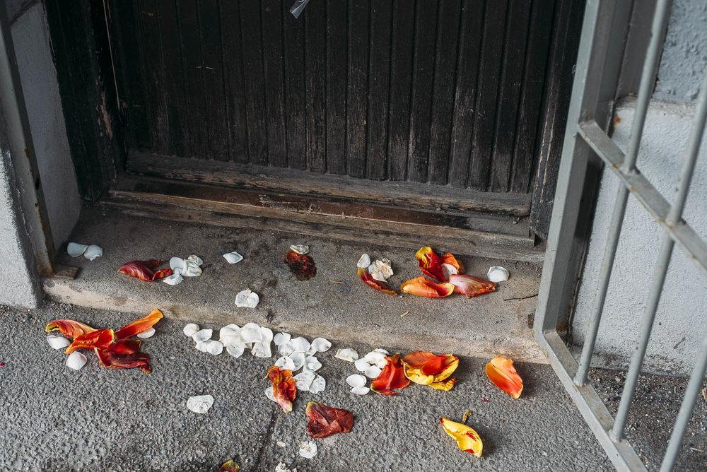 Tellus blommor i Midsommarkransen Stockholm