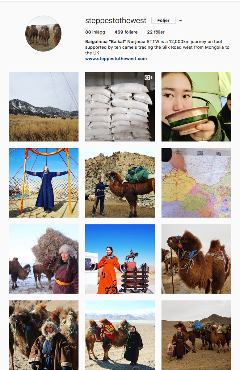 Steppes to the west instagram om kvinnan som vandrar från Mongoliet till London med sin kamel