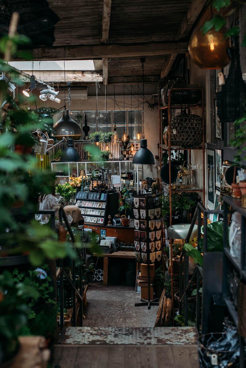 Floramor & Krukatös blomsterbutik i Göteborg guide