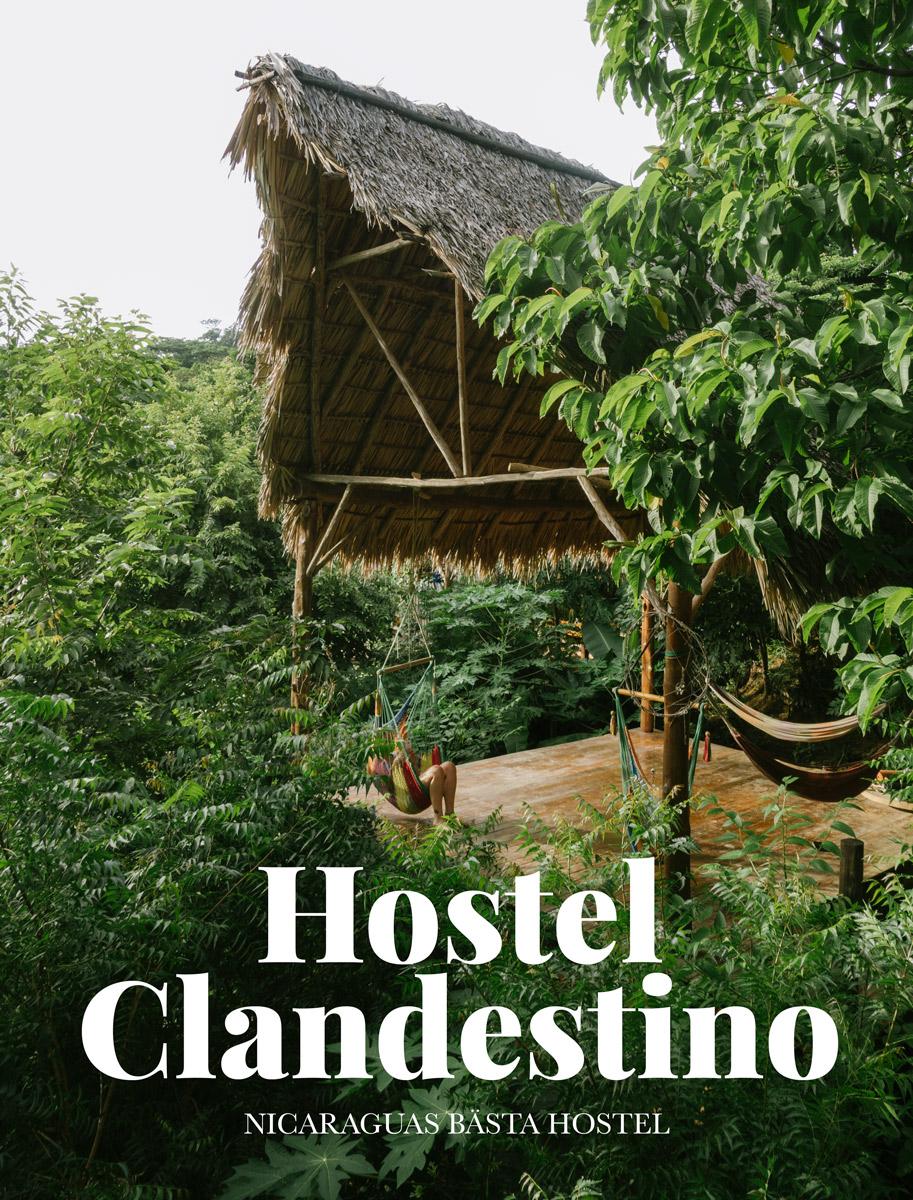 Hostel Clandestino nicaraguas bästa hostel på playa maderas