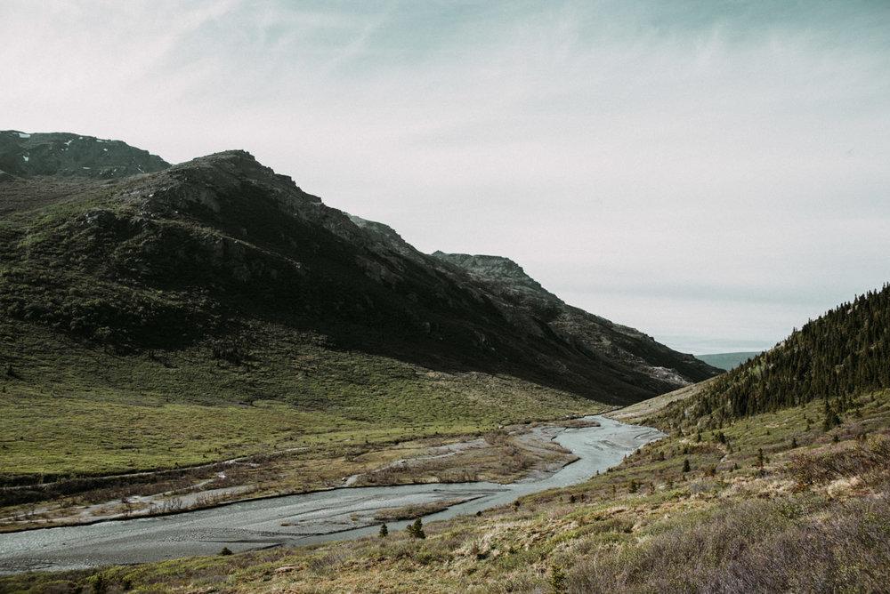 Vandra vandringsleden Savage Alpine trail i Denali national park i Alaska