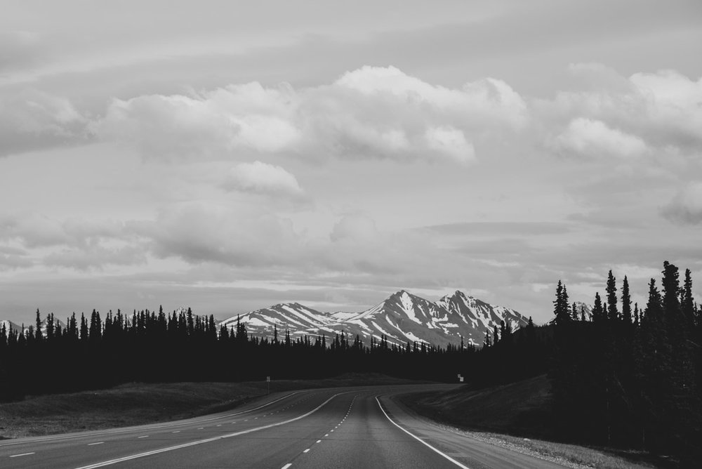 roadtrip i Denali national park i Alaska