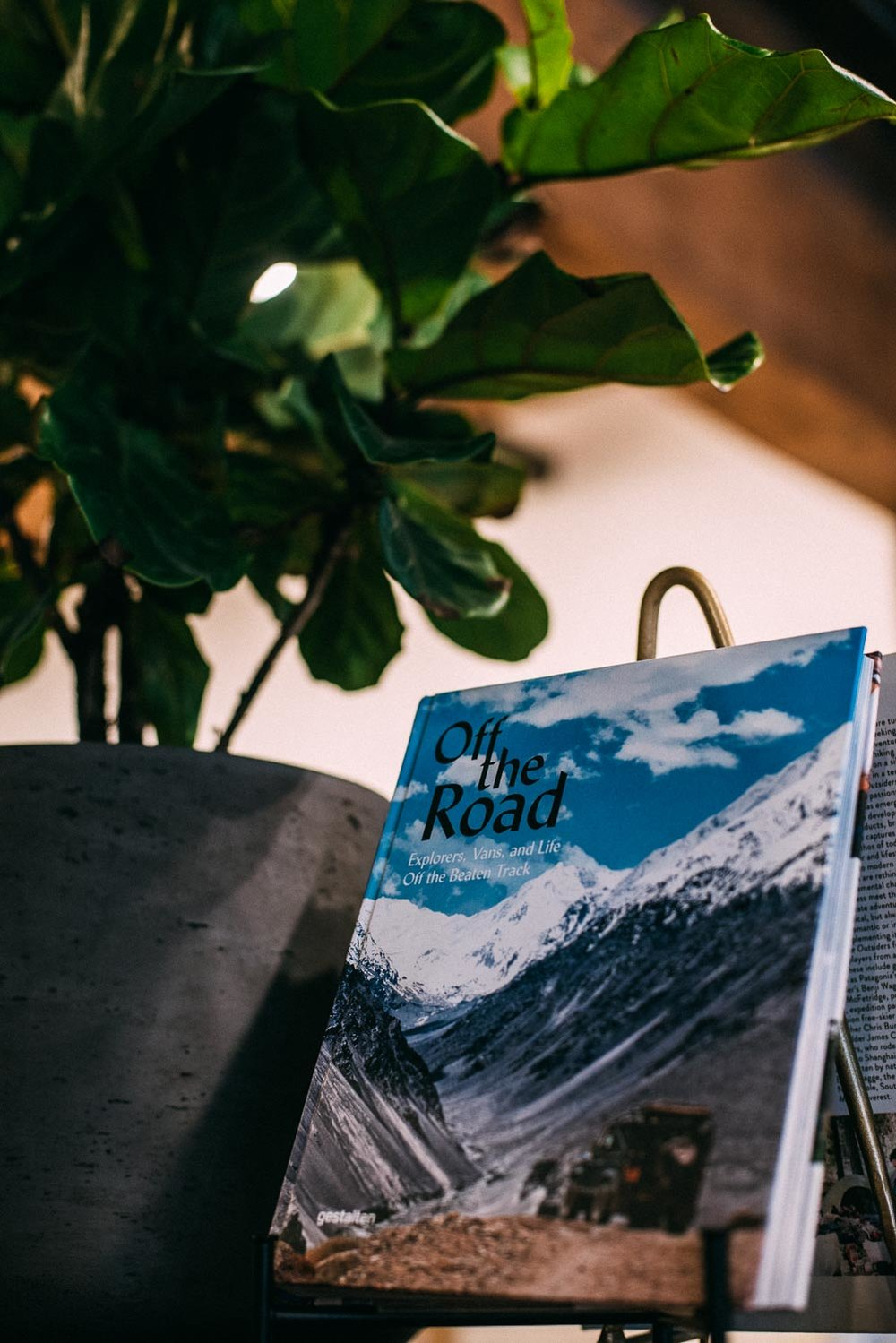En shopping guide till dig som vill hitta annorlunda butiker att besöka i Seattle med en mix av second hand och nya föremål, affären Glasswing är en av dessa.