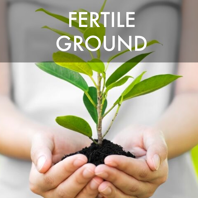 6-month program for individuals having infertility issues or wishing to optimize fertility naturally.
