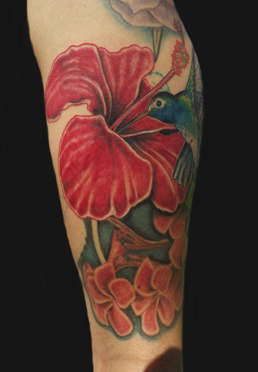 humming bird and flowers1.JPG