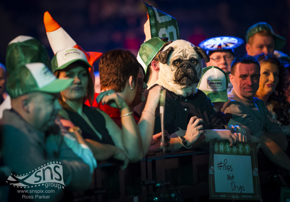 A darts fan sports a pug mask at the World Series of Darts in Glasgow.