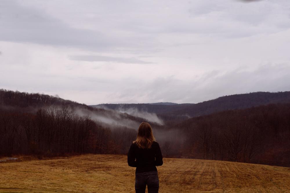 Anna, Pennsylvania, 2015
