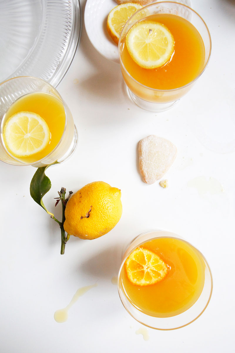 Whiskey sour punch | Freckle & Fair