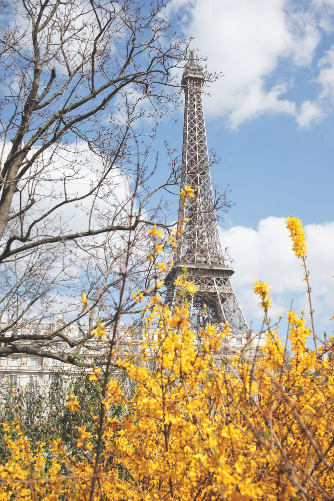 The Eiffel tower in the springtime | Freckle & Fair