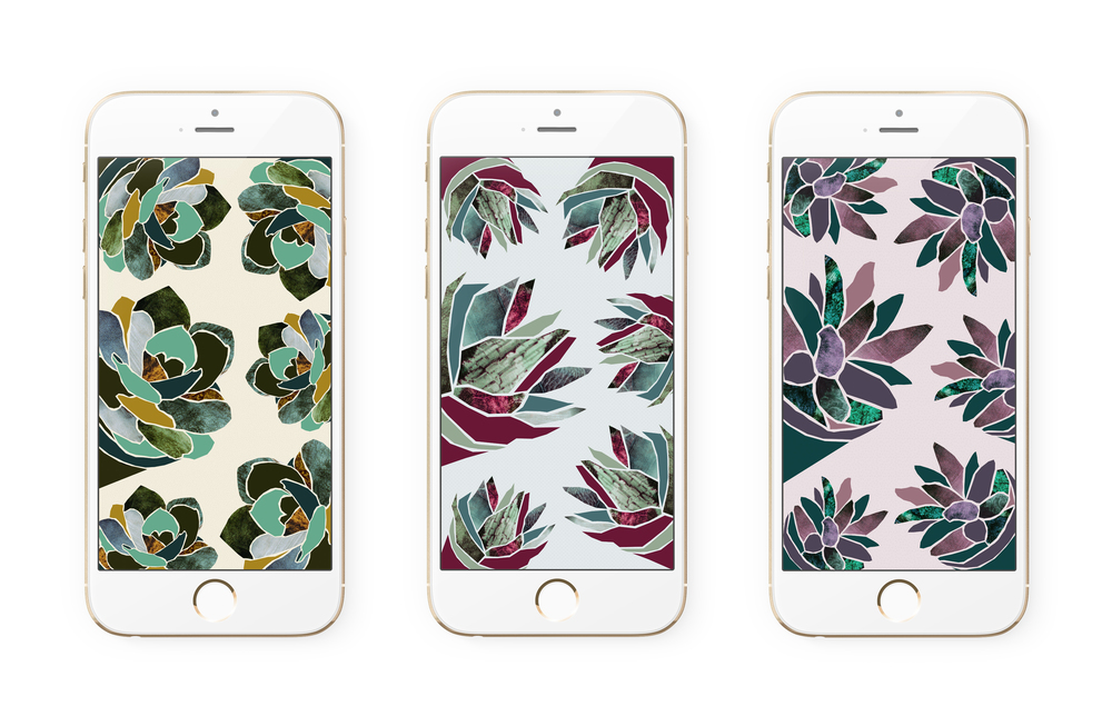 Downloadable succulent iPhone wallpaper | Freckle & Fair